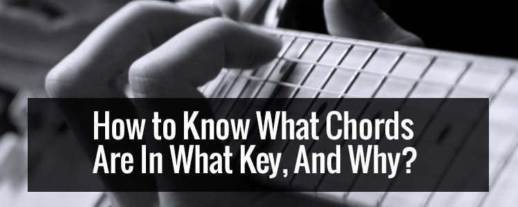 How to Know What Chords Are In What Key, And Why