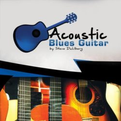 acoustic-blues-guitar-sd